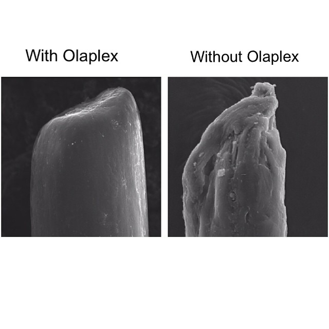 olaplex_microscope